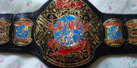 ACW Horrifying Title (Aggression Championship Wrestling)