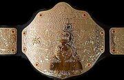 Worldheavyweightchampionship2