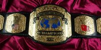 EDF New Breed Championship