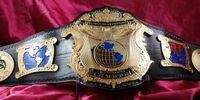 EDF Universal Heavyweight Championship
