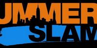New-WWE Summerslam X