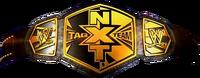 NXT Tag Team Championship 1 GD-1-