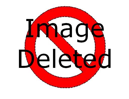 File:IMAGE DELETED.jpg