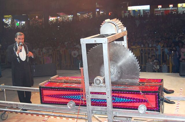 File:Lengthways Buzz Sawing.jpg