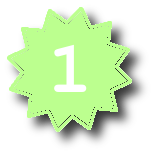 File:No1 badge.png