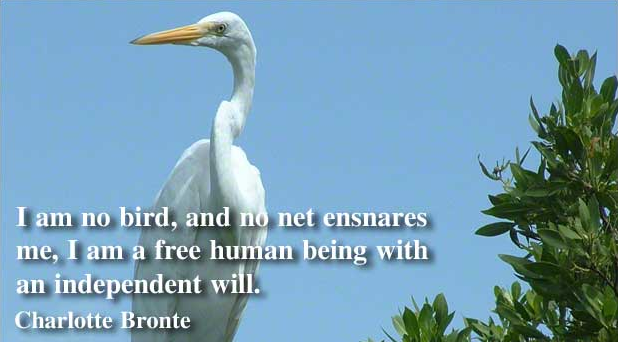 File:I am no bird; and no net ensnares me; I am a free human being with an independent will.png