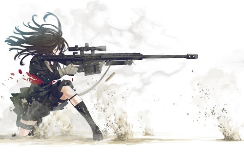 File:Snipe.jpg