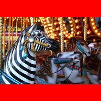 File:Carousel - fill.jpg