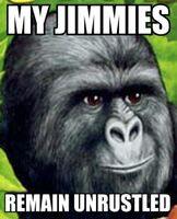 Jimmies2-forslaysblog