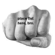 File:Bro....FIST.jpg