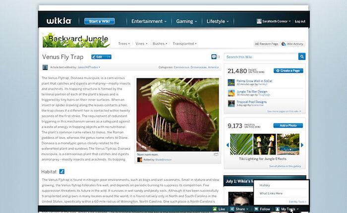 LoggedIN for blogpost
