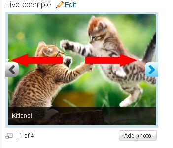 Chevron kittens