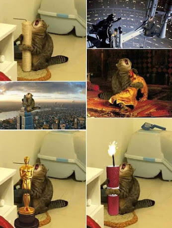 File:CaT Meme.jpg
