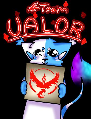 File:Team VALOR.png