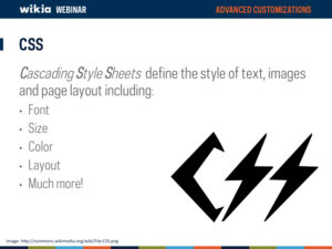 Advanced Customization Webinar Slide16