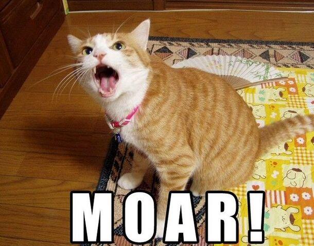 File:MOAR.jpg