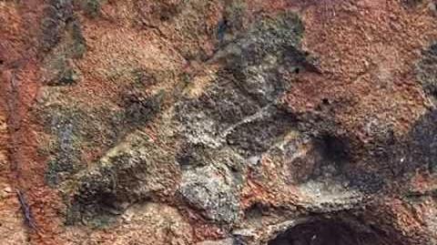 Estudiar Geología Sienitas de nefelina de la Sierra de Monchique (Portugal)
