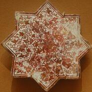 Star grapevine MET 41-165-41
