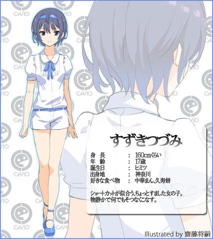 File:Suzuki tudumi.jpg