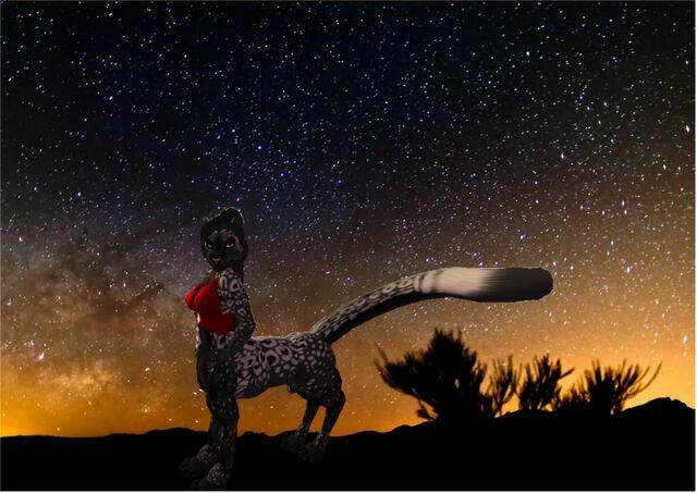 File:Starlight Stroll.jpg