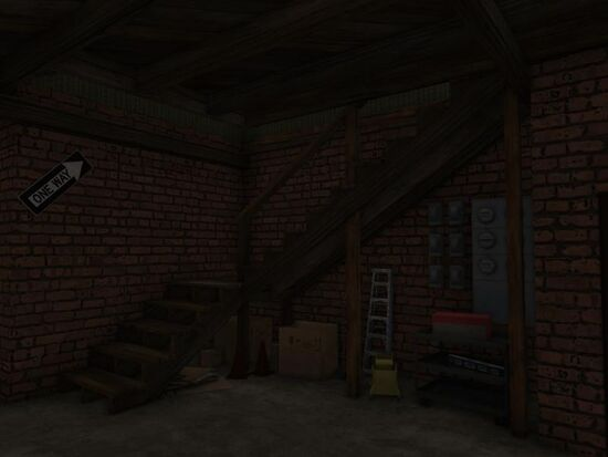 Basement - Under the Stairs - Mom's - Storage