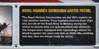 Royal Marines Commando Arctic Patrol