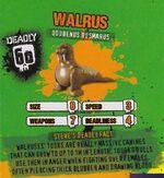 Deadly60Factsheet-Walrus