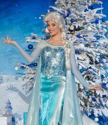 Elsa DLP