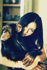 Prue Monkey1