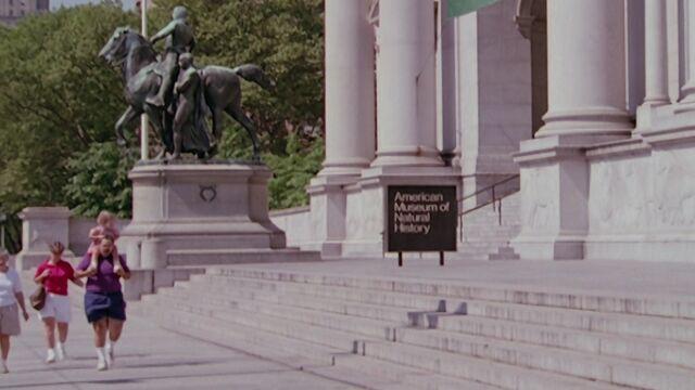 File:MuseumOfNaturalHistory.jpg