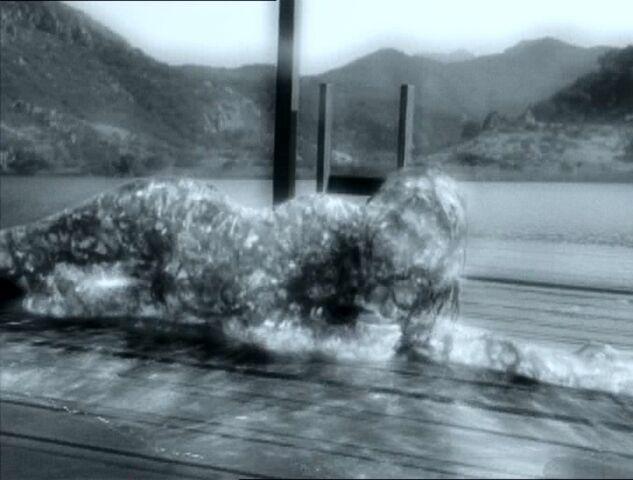 File:Waterdemonpatt2.jpg