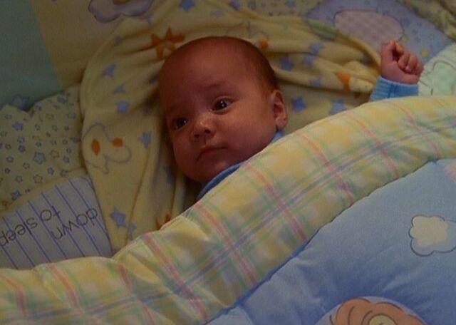 Arquivo:Wyatt in bed.jpg