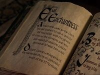 Evil Enchantress bos