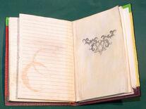 Christys Diary