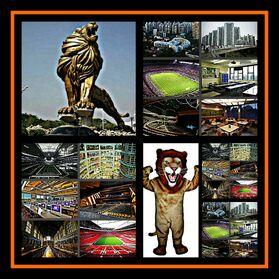 Lion Pride Academy
