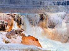 Yellowstone Mammoths