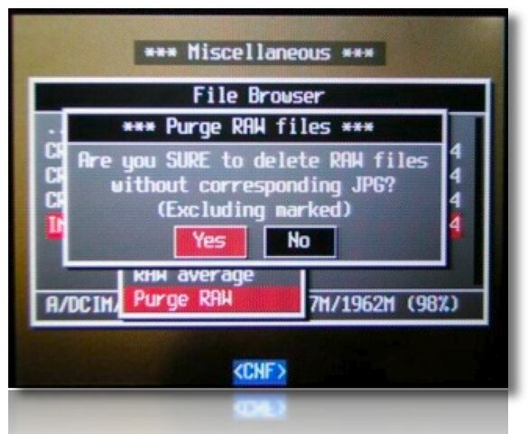 File:Purge RAW Yes.jpg