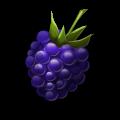 File:Ingredient-Blackberry.png