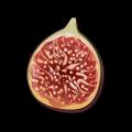 File:Ingredient-Fig.png