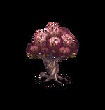 Tree-Almond