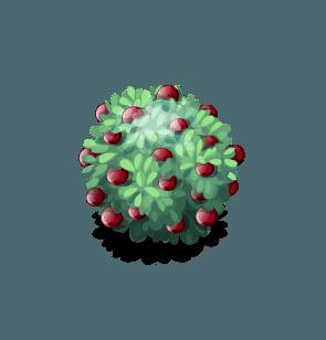File:Bush-Cranberry.png