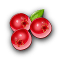 File:Ingredient-Cranberry.png