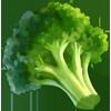 Ingredient-Broccoli