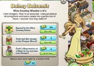 Balmy Balsamic