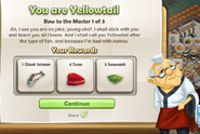 You are Yellowtail