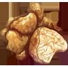 Ingredient-White Truffle