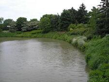CBG lake