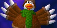 Sweater Chicken