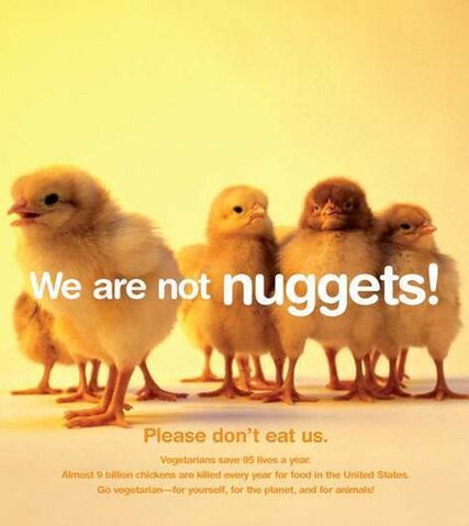 File:Animals-are-not-ours-to-eat-peta-7363357-472-530.jpg