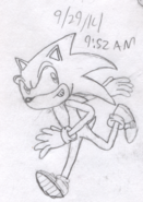 StHC Sonic